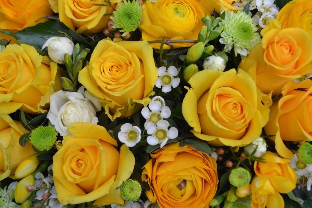 Blumenauschnitt